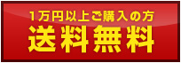一万円以上ご購入の方送料無料