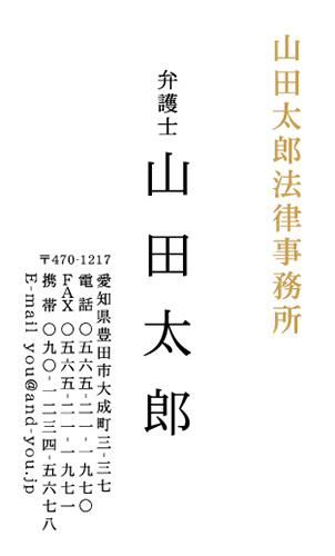 ロゴ・会社名 金・銀・メタリックゴールド・シルバー・ピンク・ホログラム印刷名刺デザイン NI-LOSP-023